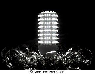 Future of the bulbs