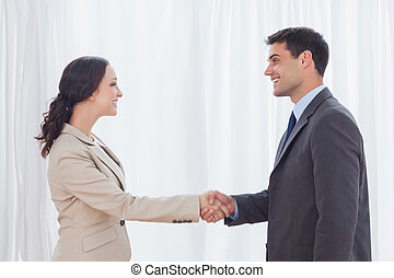 Future partners shaking hands