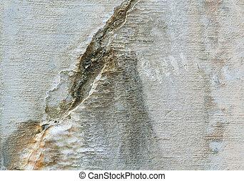 fyllda, ridit ut, väggen inramar, cement, knäckt, ...