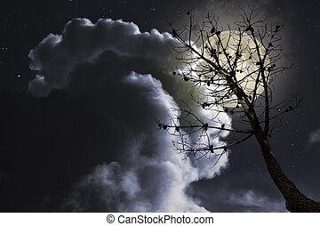fyllda, träd, måne, död, natt