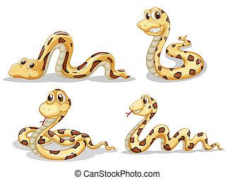 fyra, skrämmande, snakes