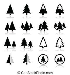 fyrre træ, vektor, iconerne, sæt