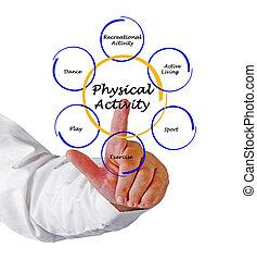 fysisk, aktivitet