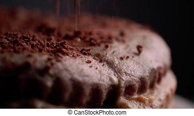 gâteau, chocolat, savoureux
