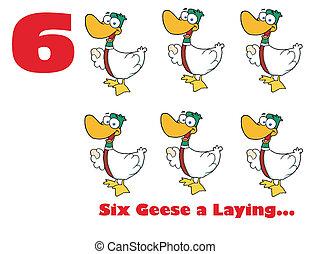 gänse, eier, sechs, liegende , zahl, rotes