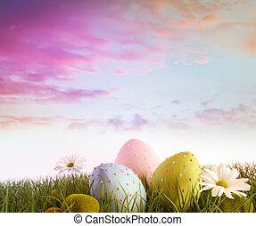 gänseblümchen, eier, regenbogen, himmelsgewölbe, farbe, gras