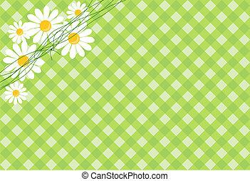 gänseblümchen, hintergrund