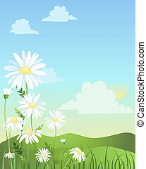 gänseblumen, design