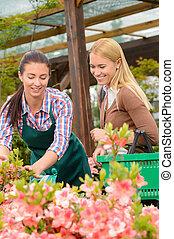 gärtner, frau, raten, kunde, kaufen, betriebe