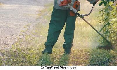 gärtner, mows, der, rasenmäher, grünes gras