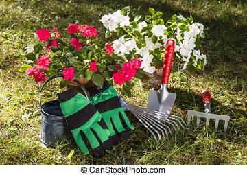 gärtnern, gardening - Stillleben mit Blumen, Giesskanne,...
