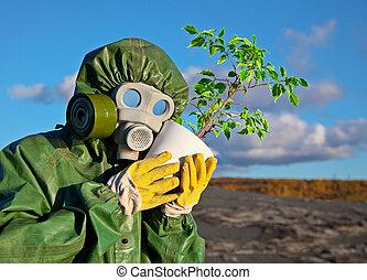 génétiquement, biologistes, plante, modifié