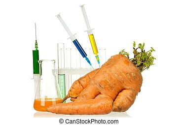 génétiquement, organisme, modifié