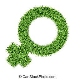 género, grass-04, marcas