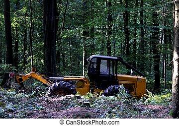 gép, erdő, dolgozó