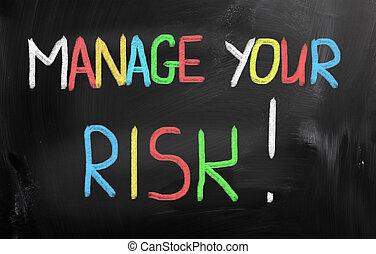 gérer, concept, ton, risque