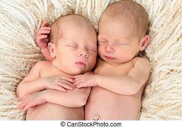 gêmeo, bebês, junto