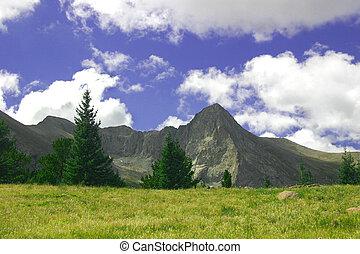 góra, łąka