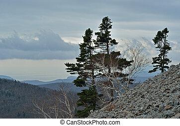 góra, 3, tajga, krajobraz