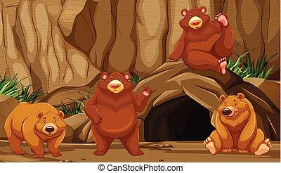 góra, jaskinia, niedźwiedź