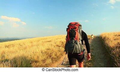 góra, pieszy, człowiek, wzdłuż, ciągnąć