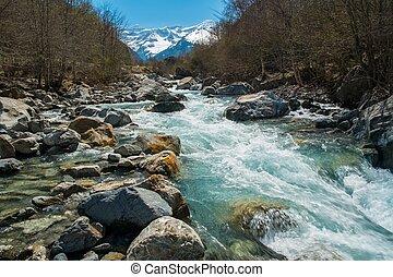 góra, rzeka, las, mocny