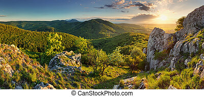 góra, -, slovakia, las, panorama