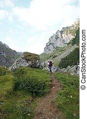 góra, wizerunek, szlakując, plecak, podróżnik