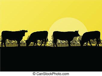 góra, wołowa krowa, natura, okolica, ilustracja, stado, ...