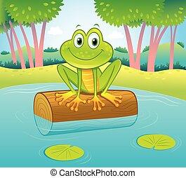 górny, staw, kloc, posiedzenie, uśmiechanie się, żaba