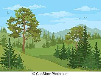 górski krajobraz, drzewa