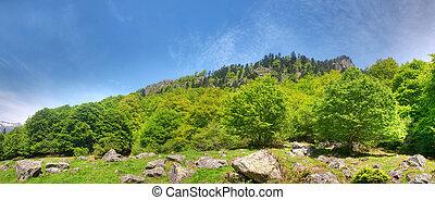 górski krajobraz, panoramiczny