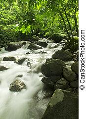 górski potok