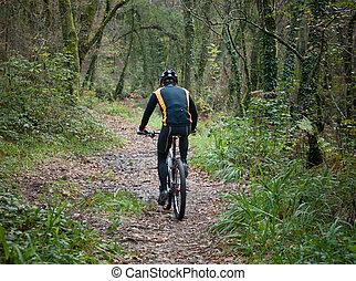 górski rower, practicing, trail., rowerzysta, las