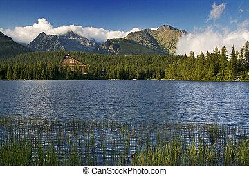 górskie jezioro, w, slovakia, tatra, -, strbske, pleso