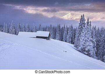 góry, barwny, zima, wschód słońca