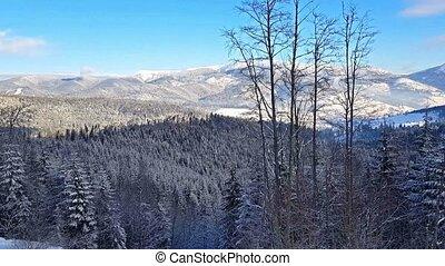 góry, carpathian