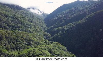 góry, drzewa, prospekt