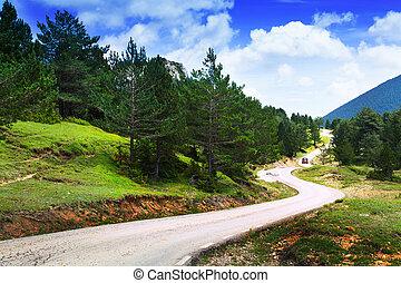 góry, krajobraz, droga