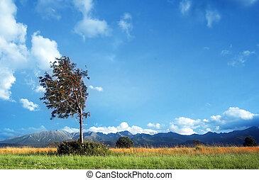 góry, krajobraz