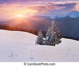 góry, wschód słońca, zima, barwny