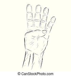 głosowanie, odizolowany, rys, albo, biały, zaciągnąć, ręka, wektor, ręka, odliczający, 2
