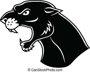 głowa, czarna pantera