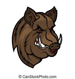 głowa, gniewny, mascot., albo, ikona, dziki wieprz, knur, świnia