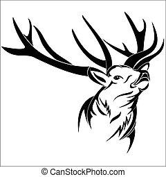 głowa, jeleń