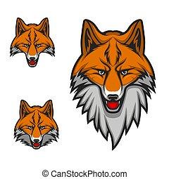 głowa, klub, lis, maskotka, kaganiec, logo, sport, czerwony, ikona