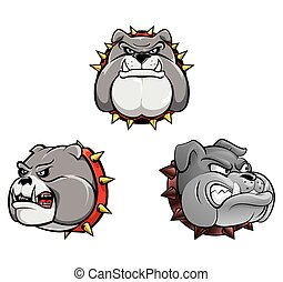 głowa, pies, zbiór, byk