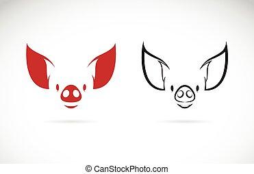 głowa, wizerunek, świnia, wektor, tło, biały