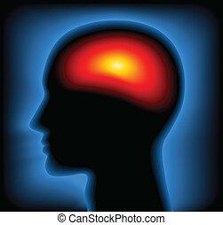 głowa, wizerunek, /, cieplny, wektor, rentgenowski
