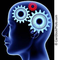 głowa, z, mechanizmy, wnętrze